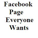 The Facebook Page Everyone Wants_Small