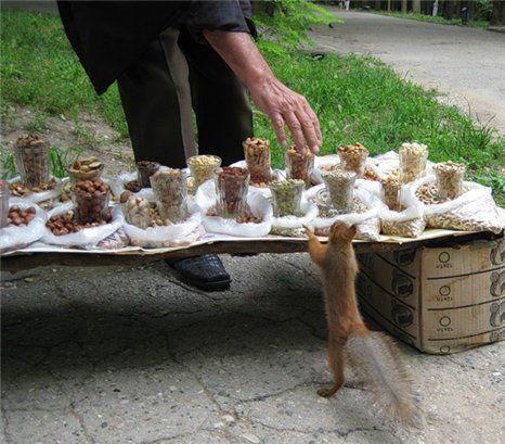 Look A Buffet!