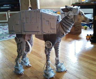 Who's Turn Is It To Walk The Imperial Walker