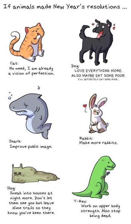 If Animals Made New Year's Resolutions