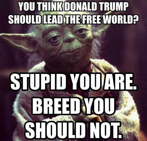 you-tell-em-yoda