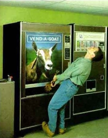 i-hate-it-when-my-gote-gets-stuck-in-the-vending-machiene