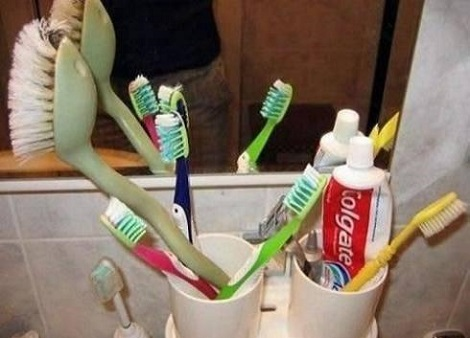 Dam It Shrek How Many Times Have I Told You To Use Your Own Toothbrush
