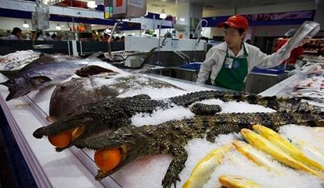 MMM Fresh Aligator...Tasty