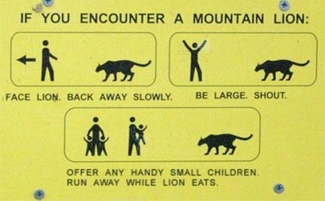Mountain Lion Directions