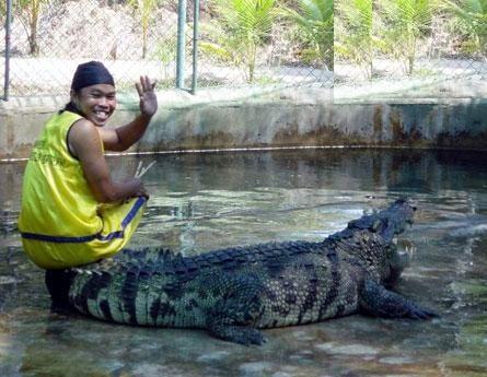 Teaching My Croc To Fetch The Stick