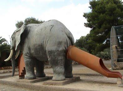 Go Ahead Honey Slide Out Of The Elephant's Ass It'll Be Fun!