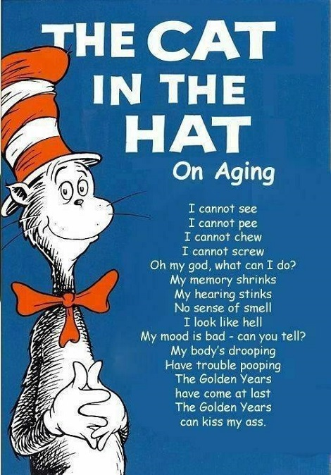 Old Age Cat In The Hat