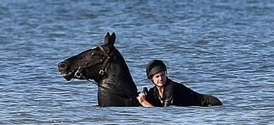 I Told You Water Polo Was Cruel To The Horses