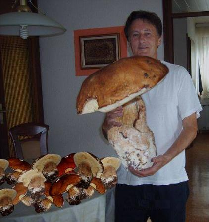 So You Want Mushrooms Kid I Got Your Mushrooms Right Here!