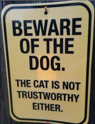 The Dog Will Bite But You Don't Want To Know What The Cat Will Do
