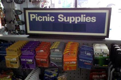 What Kind Of Picnics Do You Go On