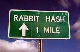 To Calm Those Stressed Rabbits